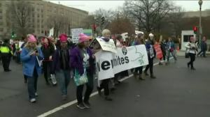 Estimate Pegs DC Women's March at 500,000