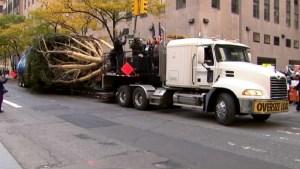 2014 Rockefeller Center Tree Makes NYC Debut