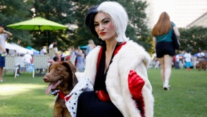 Doggy Con: a Pop Culture Convention for Canine Fanatics