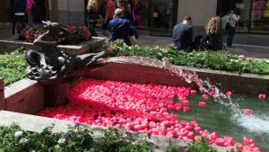Spring at Rockefeller Center