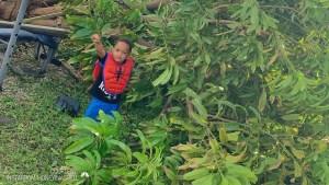 Florida Boy Who Survived Dorian Gets Heartwarming Return From Classmates