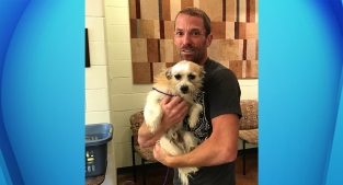 California Owner Reunites With Lost Terrier 'Scruffy,' 371 Days Later