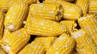 Man Charged With Shooting Corncobs at Neighbor's Home