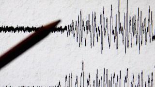 More than 30 Injured in Pakistani Capital Earthquake