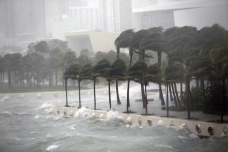 Fierce Storms Haven't Slowed Growth Along US Coastlines
