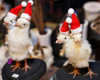 Brooklyn Flea Market Offers 'Morbid' Holiday Gift Ideas