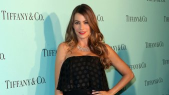 Sofia Vergara Sued by Group Representing Her Frozen Embryos