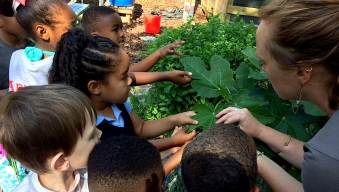 As School Gardens Grow, So Do the Students Who Tend Them