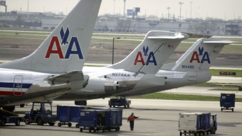 AA Tightens Leash on Emotional Support Animal Policy