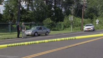 3 Kids and Mother Hit by Car at Busy NY Intersection