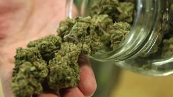 First Medical Marijuana Dispensary Opens in Florida