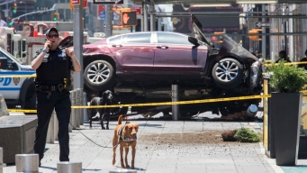 Suspect in Deadly Times Square Car Rampage Is Indicted