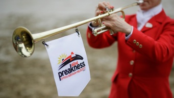 Horse Breaks Leg, Is Euthanized During Race Before Preakness