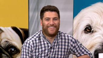 Talking 'Dog Days' with Adam Pally