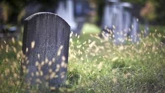 Woman Charged in 'Nightmare' Grave Desecration at Cemetery