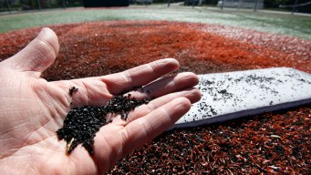 Congress Asks EPA if Rubber Turf Is Safe