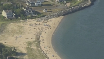Shark Attacks Seal, Holding Cape Cod Beachgoers Out of Water