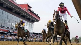 Preakness Winner War of Will Likely to Run in Belmont