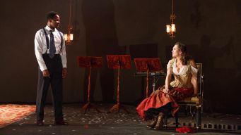 Diane Lane leads Roundabout's Stylized 'Cherry Orchard'