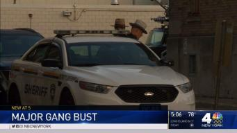 Dozens Snared in Huge NY Gang Bust