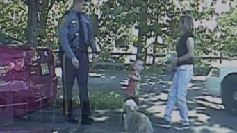 Troopers Save Child, Dog From Hot Car