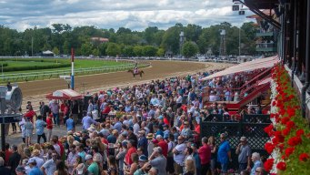 3 Horses Die in First 2 Days at Belmont Park Fall Meet