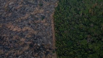 Brazilian Firefighters Toil in Amazon Region Hazy With Smoke