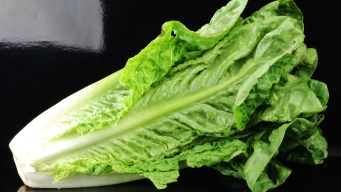 It's OK to Eat Some Romaine, Look for Labels: US Officials
