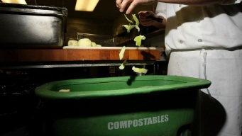 NY Will Require More Restaurants to Put Waste to Good Use