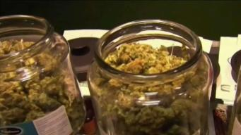 New Jersey Calls Off Vote to Legalize Recreational Pot