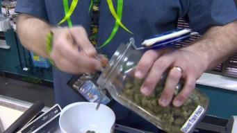 Legal Marijuana Could Bring Serious Green to NJ
