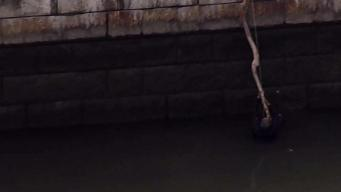 Man Dangles From Stick Before Harlem River Rescue