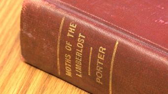 60 Years Overdue, Library Book Finally Returned