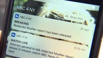 New Yorkers React to Redacted Mueller Report