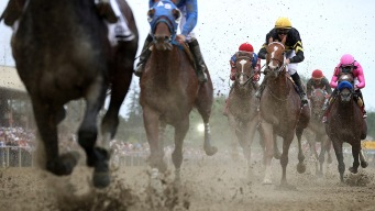 2018 Preakness Stakes: How to Watch Live Wherever You Are