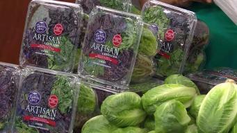 Produce Pete: Artisan Lettuce