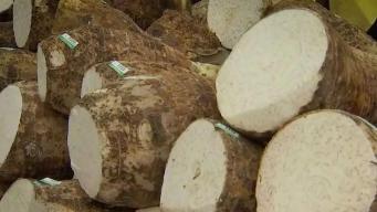 Produce Pete: Caribbean Vegetables