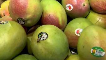 Produce Pete: Kent Mangoes