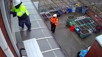 Queens Thieves Pose as Construction Workers