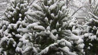 Keep Your Scarves Handy: Bitter Cold Coming After Snowfall