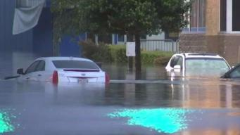 Spotting Cars Salvaged From Floodwaters