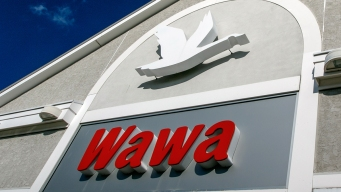 Man Claims He Found Maggots in Wawa Hoagie
