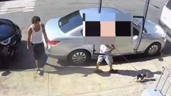 Man Bites Dog-Walking Teen During Manhattan Robbery