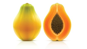 Mexico Responds to US Salmonella Outbreak Linked to Papayas