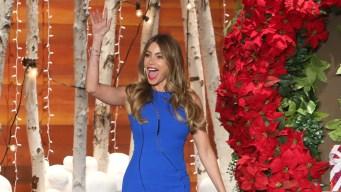 'Ellen': Sofia Vergara Dishes on Her Wedding