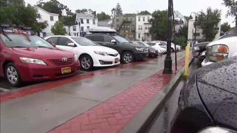 Valet Parking for an Entire Long Island Village