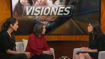 Visiones: Friends of Karen