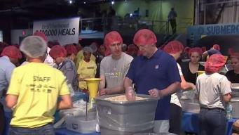 Volunteers Turn Out for National Day of Service