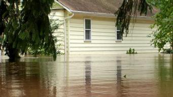 Beware Mold Growth After Irene Floods