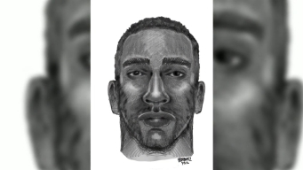 New Video of Suspect in NYC Park Rape Attempt